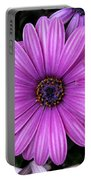 Purple Trio Portable Battery Charger
