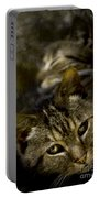 Purr Portable Battery Charger