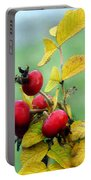Pyracantha Berries Life Portable Battery Charger