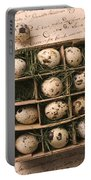 Quail Eggs In Box Portable Battery Charger