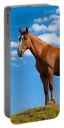 Quarter Horse Portable Battery Charger