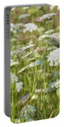 Queen Anne's Lace In All Its Glory Portable Battery Charger