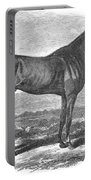 Racehorse, 1867 Portable Battery Charger
