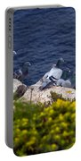 Racing Pigeons Portable Battery Charger