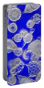 Radiolarian Ooze Portable Battery Charger