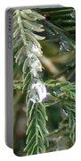 Rain Drop On Fir Tree Portable Battery Charger