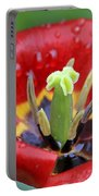 Rain Kissed Tulip 2 Portable Battery Charger