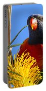 Rainbow Lorikeet Pose Portable Battery Charger