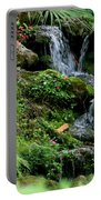 Rainbow Springs Waterfall Portable Battery Charger