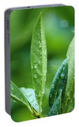 Raindrops Portable Battery Charger