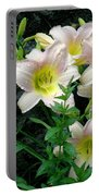 Rainy Day Day Lilies Portable Battery Charger