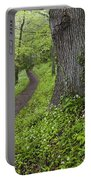Ramsons By Path In Woods, County Louth Portable Battery Charger