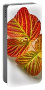 Raspberry Leaves In Autumn Portable Battery Charger