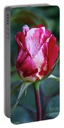 Raspberry Swirl Rose Portable Battery Charger