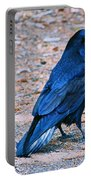 Raven Blue Portable Battery Charger