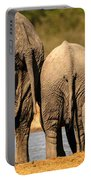 Rear View Portable Battery Charger