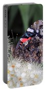 Red Admiral With Folded Wings Portable Battery Charger