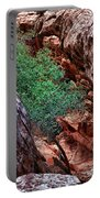 Red And Green Portable Battery Charger by Rick Berk