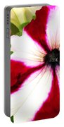 Red And White Petunia Portable Battery Charger