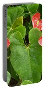 Red Anthurium Portable Battery Charger