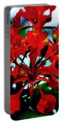 Red Beauty Portable Battery Charger