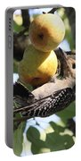 Red-bellied Woodpecker - Yummy Pears Portable Battery Charger