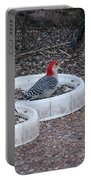 Red Bellied Woodpeckers Male And Female Portable Battery Charger