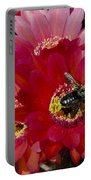 Red Cactus Flower With Bumble Bee Portable Battery Charger