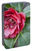 Red Camellia Squared Portable Battery Charger