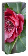 Red Camellia Squared Portable Battery Charger by Teresa Mucha