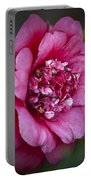 Red Camellia Portable Battery Charger by Teresa Mucha