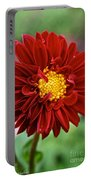 Red Dahlia Unfurled Portable Battery Charger