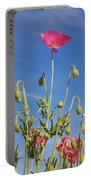 Red Flower Against Blue Sky Portable Battery Charger