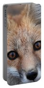 Red Fox 352 Portable Battery Charger