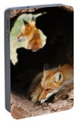 Red Fox Dreaming Portable Battery Charger