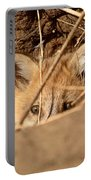 Red Fox Pup Peaking Out Of Den Portable Battery Charger