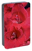 Red Gladiolus Portable Battery Charger
