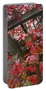 Red Grape Leaves And Beams Portable Battery Charger