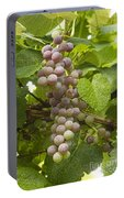 Red Grapes On The Vine Portable Battery Charger