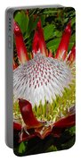 Red King Protea Portable Battery Charger