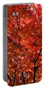 Red Leaves Black Branches Portable Battery Charger