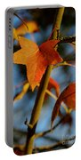 Red Leaves In Winter Sunset Portable Battery Charger