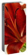 Red Lily Number Two Portable Battery Charger