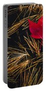 Red Maple Leaf On Pine Needles In Pool Portable Battery Charger