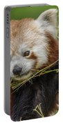 Red Panda Grasping Portable Battery Charger