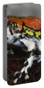 Red Rain Frog Portable Battery Charger