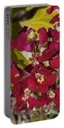 Red Silk Portable Battery Charger