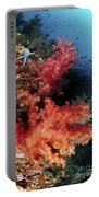 Red Soft Corals And Blue Leather Sea Portable Battery Charger