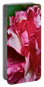 Red Speckled Rose Portable Battery Charger