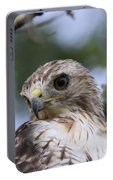 Red-tailed Hawk Has Superior Vision Portable Battery Charger